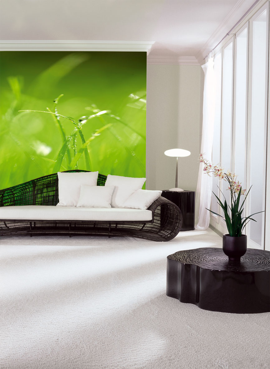 fototapete komar gras online kaufen. Black Bedroom Furniture Sets. Home Design Ideas