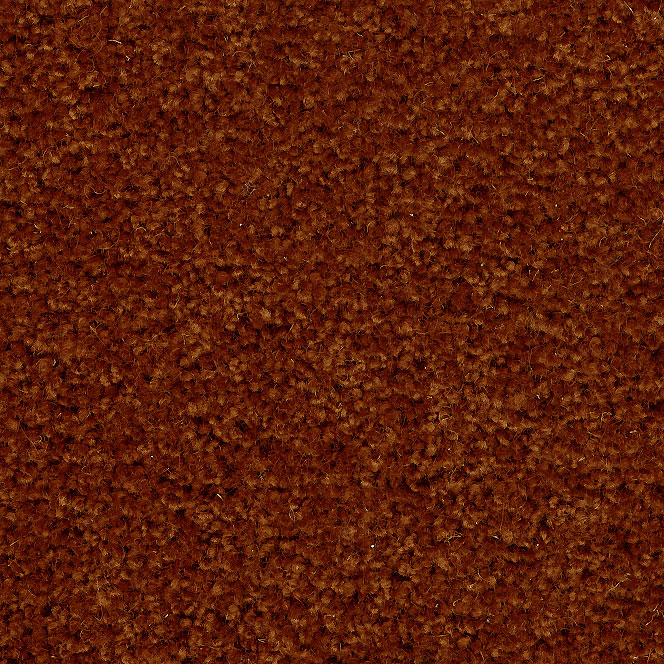 Teppichboden Wolle Auslegware Beige Hell Braun 3108 Online